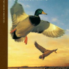 The Complete Hunter Duck Hunting